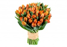 Tulips Bouquet -orange